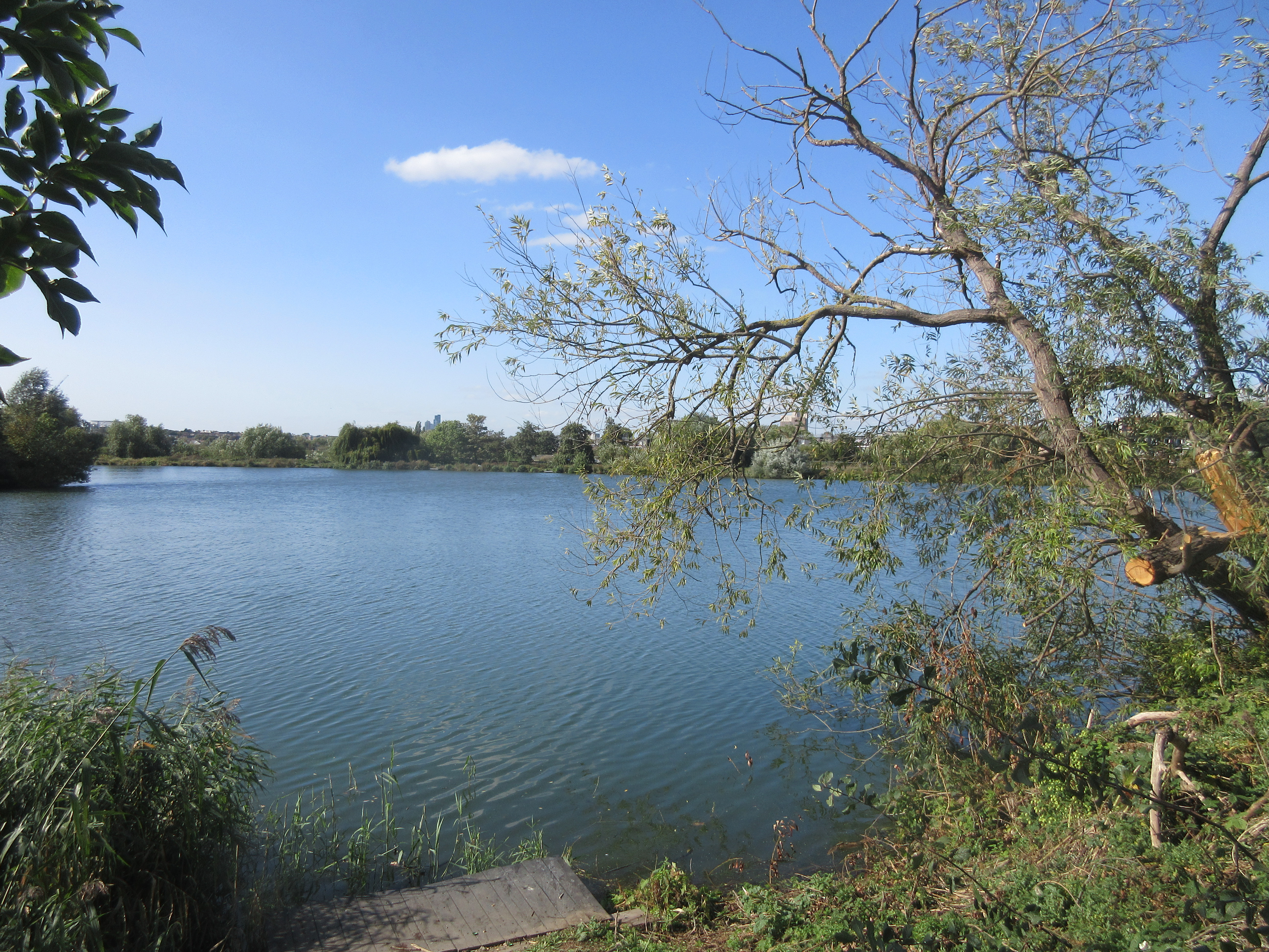 walthamstow wetlands - photo by juliamaud