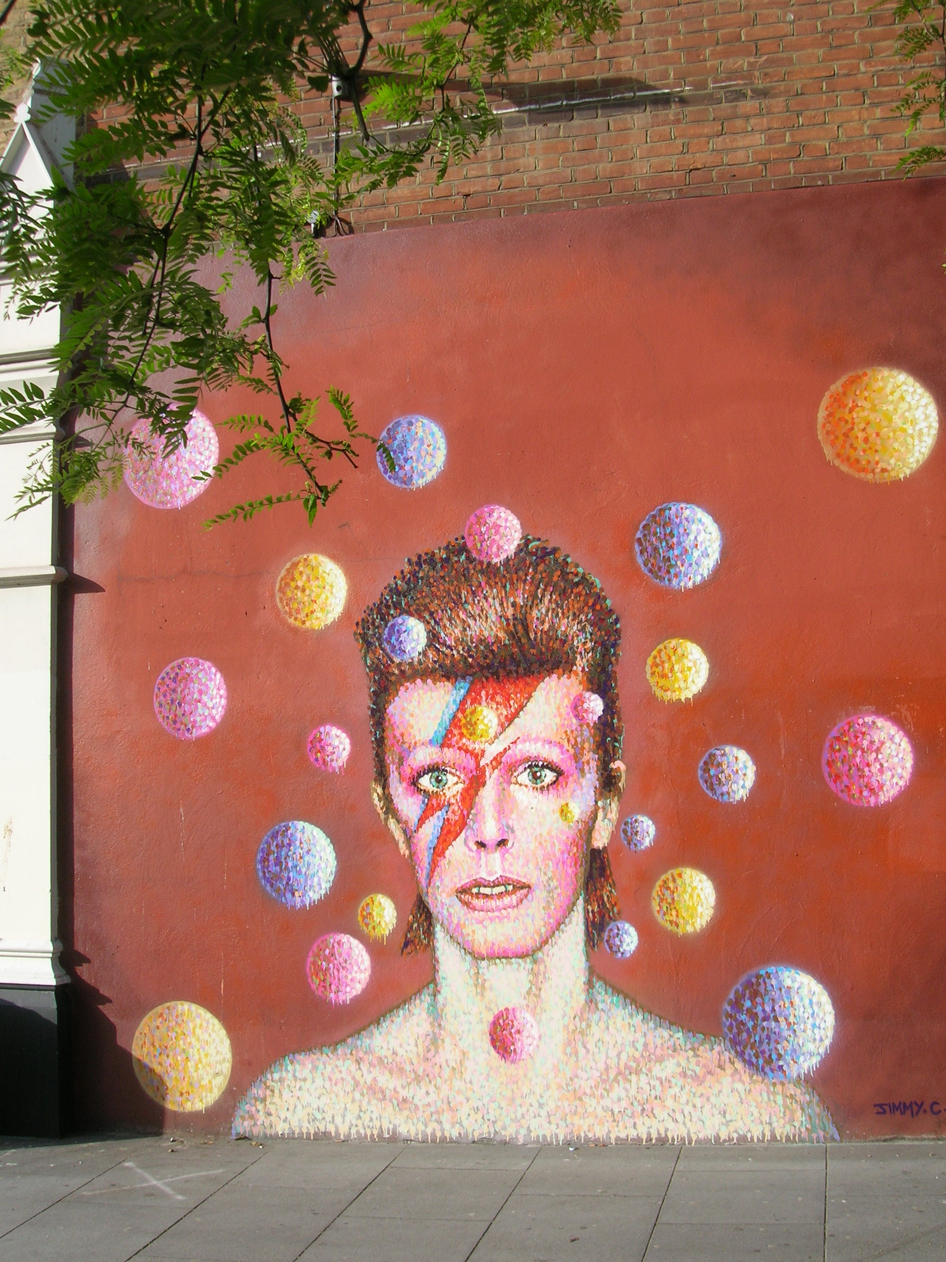 Aladdin Sane - photo by Juliamaud